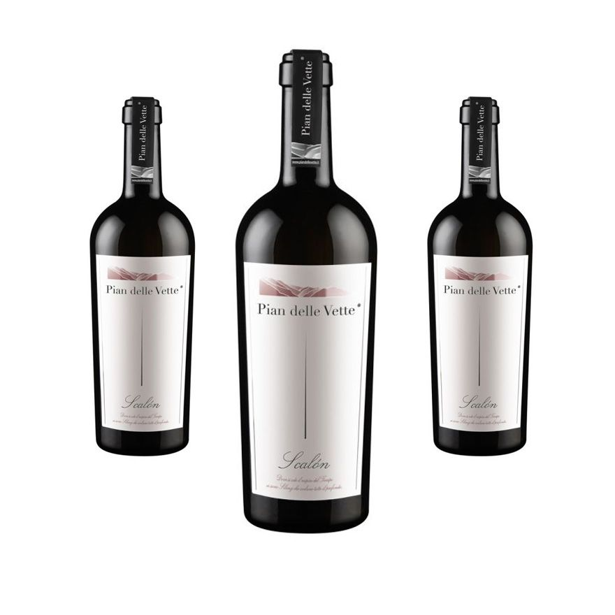 Scalon grapes Diolinoir 2014 - Elegance and vivacity - 3 bottles